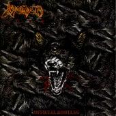 Live de Venom