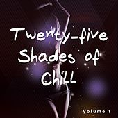 Twenty-Five Shades of Chill, Vol. 1 by Various Artists