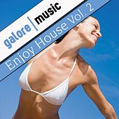 Enjoy House, Vol. 2 by Various Artists