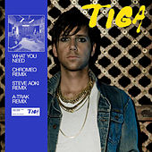 What You Need ((remixes)) by Tiga