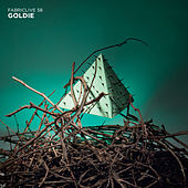 FABRICLIVE 58: Goldie de Various Artists