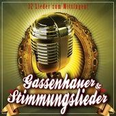 Stimmungslieder und Gassenhauer zum mitsingen de Various Artists