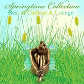 Springtime Collection – Best of Chillout & Lounge de Various Artists