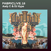 FABRICLIVE 18: Andy C & DJ Hype by Various Artists