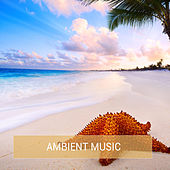 Ambient Music by Various Artists