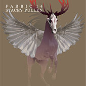 fabric 14: Stacey Pullen by Various Artists