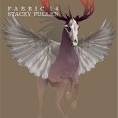fabric 14: Stacey Pullen von Various Artists