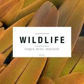 Wildlife, Vol. 4 by Various Artists