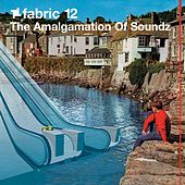 fabric 12: The Amalgamation of Soundz by Various Artists