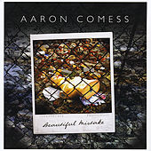 Beautiful Mistake by Aaron Comess