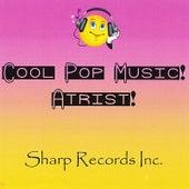 Cool Pop Music Artist by Various Artists