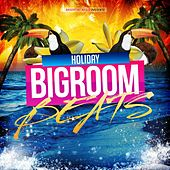 Holiday Bigroom Beats by Various Artists