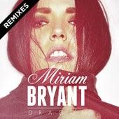 Dragon Remixes by Miriam Bryant