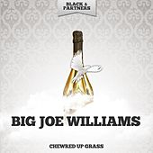 Chewred Up Grass de Big Joe Williams