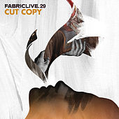 FABRICLIVE 29: Cut Copy by Various Artists