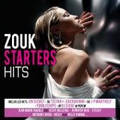 Zouk Starter Hits de Various Artists