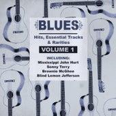 Blues Hits, Essential Tracks & Rarities, Vol. 1 von Various Artists