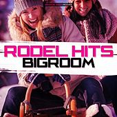 Rodel Hits Bigroom by Various Artists