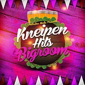 Kneipen Hits Bigroom by Various Artists