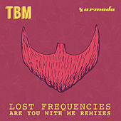 Are You with Me (DIMARO Remixes) de Lost Frequencies