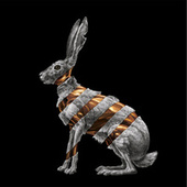Jackrabbit by San Fermin