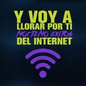 Y Voy a Llorar por Ti: Norteno Exitos del Internet by Various Artists