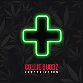 Prescription de Collie Buddz