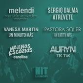 HIT. La canción by Various Artists