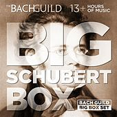 Big Schubert Box by Various Artists