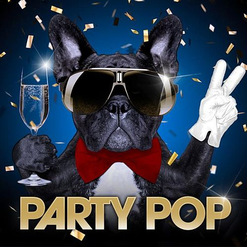 Party Pop by Robbie Nevil