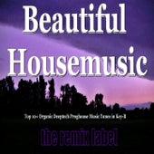 Beautiful Housemusic (Vibrant Deephouse Sounds Meets Christmas Proghouse Music Tunes Compilation in Key-B Plus the Paduraru Megamix) de Various Artists