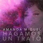 Hagamos Un Trato (feat. Big Metra) by Amanda Miguel