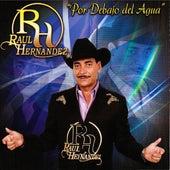 Por Debajo Del Agua by Raul Hernandez