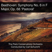 Beethoven: Symphony No. 6 in F Major, Op. 68 'Pastoral' von Paris Conservatoire Orchestra