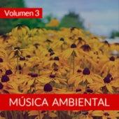 Música Ambiental (Volumen 3) von The Sunshine Orchestra