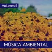Música Ambiental (Volumen 5) von The Sunshine Orchestra