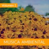 Música Ambiental (Volumen 1) von The Sunshine Orchestra