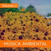 Música Ambiental (Volumen 2) von The Sunshine Orchestra