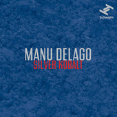 Silver Kobalt by Manu Delago