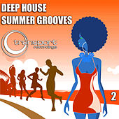 Deep Summer Grooves Vol. 2 de Various Artists