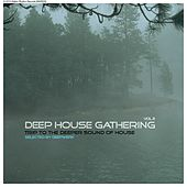 Deep House Gathering, Vol. 2 - Trip to the Deeper Sound of House - Selected By Deepwerk von Various Artists
