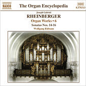 RHEINBERGER: Works for Organ, Vol. 6 de Wolfgang Rubsam