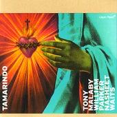 Tamarindo by Tony Malaby
