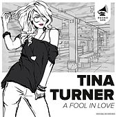A Fool in Love (The Very Best of Tina Turner) by Tina Turner