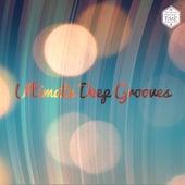 Ultimate Deep Grooves von Various Artists
