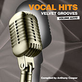 Vocal Hits Velvet Grooves Volume Alive! by Various Artists