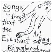 Songs I Forgot That The Elephant Remembered by Art Paul Schlosser