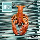 I Loved You (feat. Melissa Steel) (Remixes) von Blonde