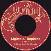 Fan It by Lightnin' Hopkins