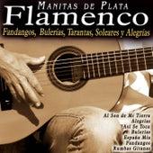 Flamenco: Fandangos, Bulerías, Tarantas, Soleares y Alegrías di Manitas de Plata